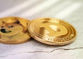 Krzysztof Raś: meme coiny ukazują siłę społeczności internetowych