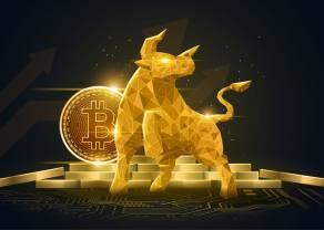 Notowania giełdowe. Zobacz wykres dnia - kurs bitcoina w szale spekulacji osiąga poziom 40 000 dolarów (USD)!