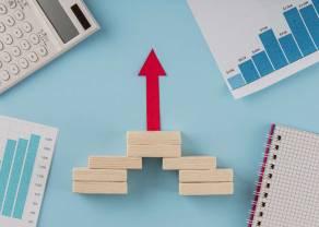 Notowania GPW: kursy akcji PZU oraz CCC napędzają wzrosty indeksu giełdowego WIG20