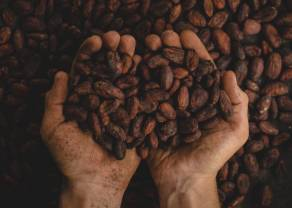Notowania kawy, kakao, złota. Przegrzany gaz ziemny!  Szczepionka i pogoda zapewniają wsparcie surowcom