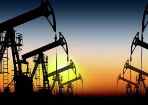 Notowania ropy WTI i BRENT. Duże zwolnienia w sektorze naftowym i wyczekiwanie na działania OPEC+. [cena Palladu]