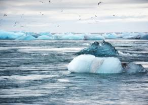 Obojętność wobec zmian klimatu sięgnęła szczytu - prognozy na I kwartał 2020 roku