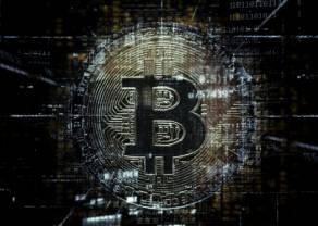 Od venture capital do rynku kryptowalut – IQ Partners w obliczu ewolucji