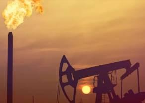 OPEC+ planuje cięcie prawie jednej piątej produkcji ropy. Czy USA i inni producenci się przyłączą?