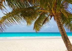 Paradise Papers - czyli kłopoty w raju... Podatkowym cz.2