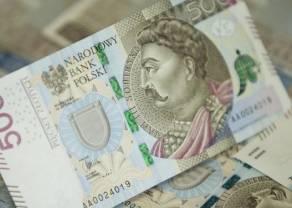 Polski złoty korzysta na decyzji EBC