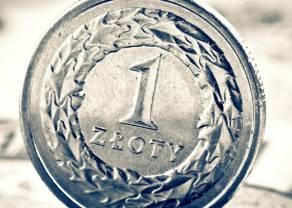 Polski złoty (PLN) mocno się trzyma. Kursy franka i euro w dół. Funt i dolar bez niespodzianek