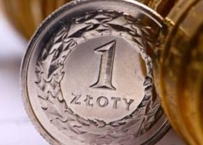 Polski złoty (PLN) w centrum uwagi. Sprawdź kursy euro, funta, franka i dolara na rynku Forex po południu