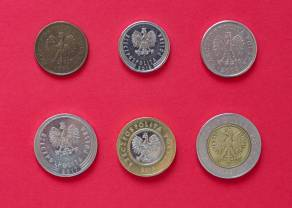 Polski złoty pokazuje siłę i deklasuje! Dobra passa PLN trwa w najlepsze - kurs euro na coraz niższych poziomach
