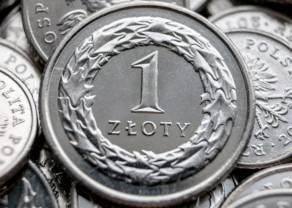 Polski złoty się umocnił. Rynek przymyka oko na słabe dane, waluty emerging markets odżywają