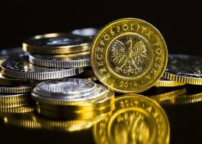 Polski złoty wciąż pozostaje jedną z najsłabszych walut krajów rozwijających się. Kurs forinta (HUF) oraz korony czeskiej (CZK) w górę