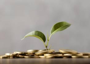 Potencjalne długoterminowe skutki obecnych wyzwań gospodarczych i inwestycyjnych