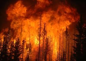 Pożary duszą gospodarkę Kanady