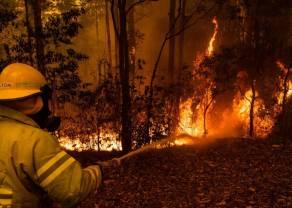 Pożary w Australii uderzają w PKB, zaufanie i rząd