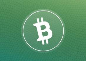Problemy Bitcoin Cash – raport