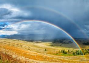 Produkty rolne na prowadzeniu przez problemy z pogodą. Złoto, ropa naftowa, gaz, miedź - omówienie bieżącej sytuacji