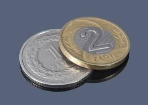 Prognoza walutowa dla polskiego złotego. PLN cały czas ma szanse na umocnienie! Zobacz, ile możesz zapłacić za euro (EURPLN) oraz dolara (USDPLN) w 2022 roku