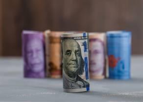 Prognozy walutowe Q3: Huśtawka dolara doprowadzi kurs euro do euforii? Zobacz, jakie są perspektywy dla rynku walutowego FOREX