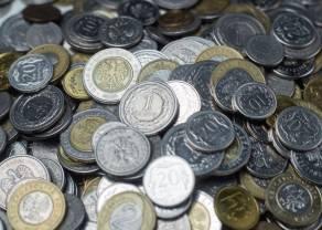 Kurs polskiego złotego (PLN) a Rada Polityki Pieniężnej (RPP). Listopad miesiącem podwyżki stóp procentowych? Czy notowania narodowej waluty wpadną w spekulacyjny wir?