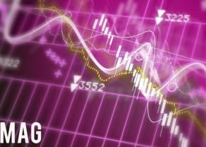 Raport giełdowy - najlepiej radzą sobie zagraniczne spółki