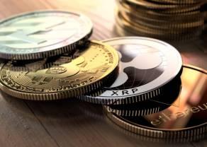 Ripple i Bitcoin Cash w górę. Ile zapłacimy za Bitcoina, Ethereum i Litecoina? Kursy kryptowalut 6 września