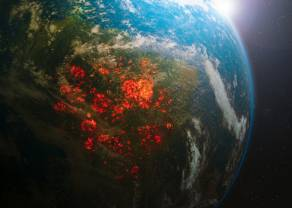 Inwestowanie w zmiany klimatyczne to znacznie więcej niż odnawialna energia! Od cyfrowych fabryk po odzież pochodzenia roślinnego - jak zarobić na zmianach klimatu?