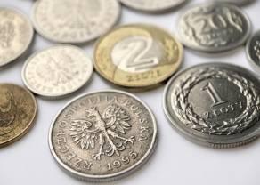 RPP wciąż oczekuje spadku inflacji w 2022 r. - stopy procentowe bez zmian! Jak na tę decyzję zareaguje kurs złotego (PLN)?