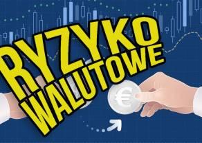 Ryzyko walutowe - jak uniknąć niepotrzebnych strat przy inwestowaniu w ETF?