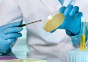 Selvita dzieli się na dwie spółki - na GPW debiutuje Ryvu Therapeutics