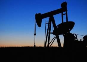 Spada cena ropy