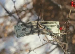 Spadki na kursie dolara do funta (GBP/USD). Odbicie w Europie pomimo chaosu na giełdach w Chinach