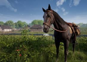 Spółka zależna Incuvo pozyskała do portfolio hitową produkcję Render Cube – Medieval Dynasty! Katowickie Studio przygotuje VR-ową wersje gry