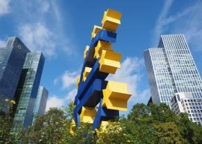 Strefa euro zmienną jest