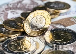 Waluty FOREX: polski złoty (PLN) kończy sesję mocniejszym akcentem, dolar (USD) rozpoczął wzrosty, a kurs euro (EUR) widocznie zniżkuje