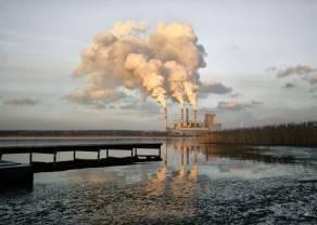 Wkroczenie CBA podnosi rentowność? Enea i obrót biomasą