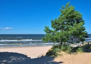 Za ile apartament nad Bałtykiem? Nieruchomości w kurortach turystycznych – co z cenami w czasach covidu?