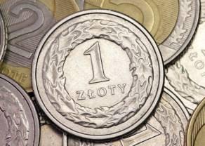 Złoty ignoruje wybory. Co z kursem euro? Amerykanie żyją ponad stan?
