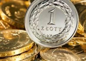 Polski złoty (PLN) zyskuje do dolara. Funt najmocniejszy. Ile złotych zapłacimy za euro, dolara, franka i funta?