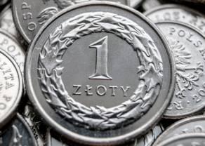 Złoty najsłabszy względem euro od maja. Kursy dolara, franka i funta wysoko na rynku Forex