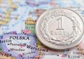Złoty odzyskał grosz względem kursu euro. Polska zwalnia, ale będziemy zdrowsi