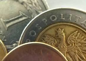 Polski złoty (PLN) odrabia straty. Ile kosztują euro, dolar, funt, frank i korona czeska po południu?