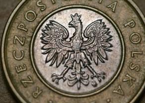Złoty z szansą umocnienia się do dolara i euro