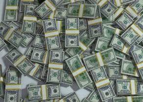 Zmienność dolara wpływa na złotego