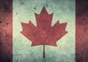 Zmienność kursów walut - CAD (dolar kanadyjski), USD (dolar amerykański)