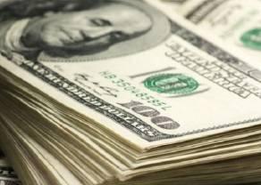 Zobacz reakcję euro i złotego do dolara po informacjach z USA!