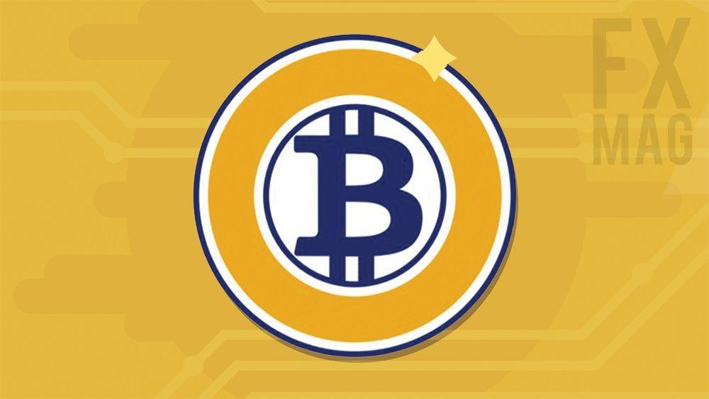 Bitcoin Gold (BTG) - co musisz o nim wiedzieć? Opis kryptowaluty, historia, notowania, opinie
