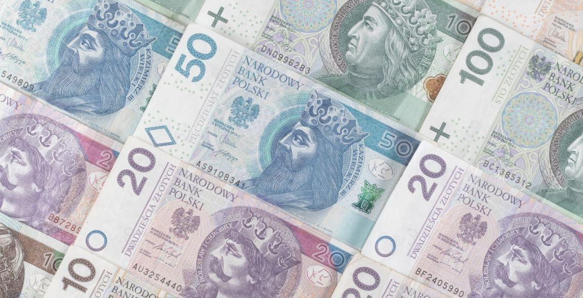 Co z polskim złotym w 2021 roku? Frank, dolar, euro i funt na rynku Forex. Prognozy walutowe