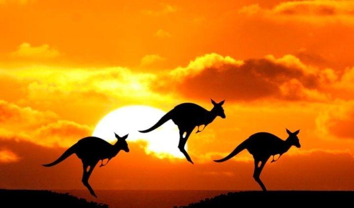Dolar australijski i funt tracą do dolara USD. Kursy walut na rynku Forex we wtorek wieczorem