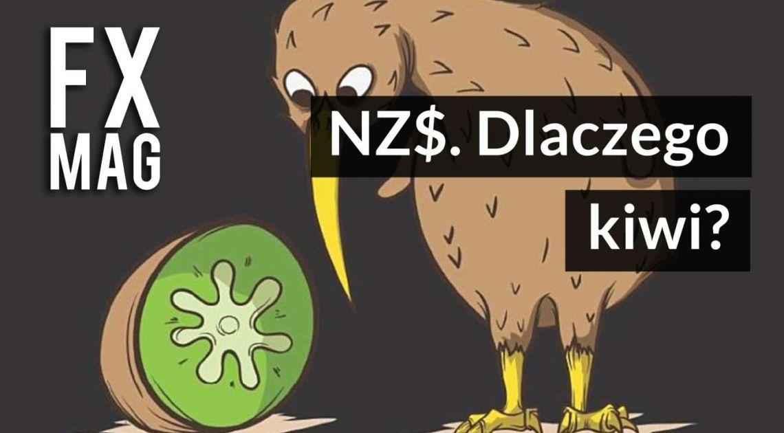 Dolar nowozelandzki. Dlaczego NZ$ to inaczej kiwi? Historia, fakty, ciekawostki, banknoty i monety NZD