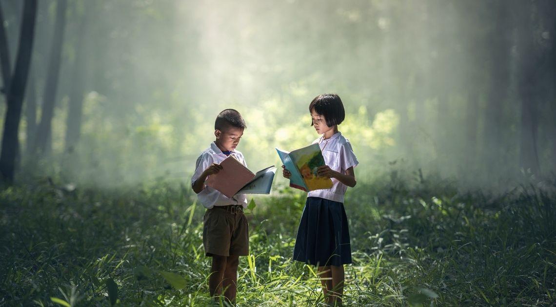 Jesteś w lesie? Webinar Forex, podczas którego naprawiamy to, czego książki i szkoleniowcy nauczyli Cię źle
